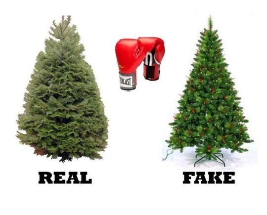 Real Christmas Trees Vs Fake Christmas Trees Which Are Greener Birmingham Mi Blog Fake Christmas Trees Real Christmas Tree Artificial Tree