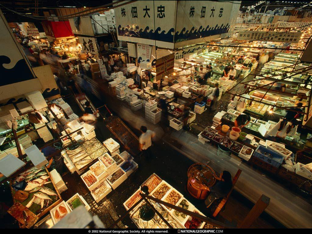 Tsukiji Fish Market Japan Tsukiji Tokyo Best Places To Travel