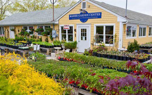Urban Garden Center Nyc 39 S Largest