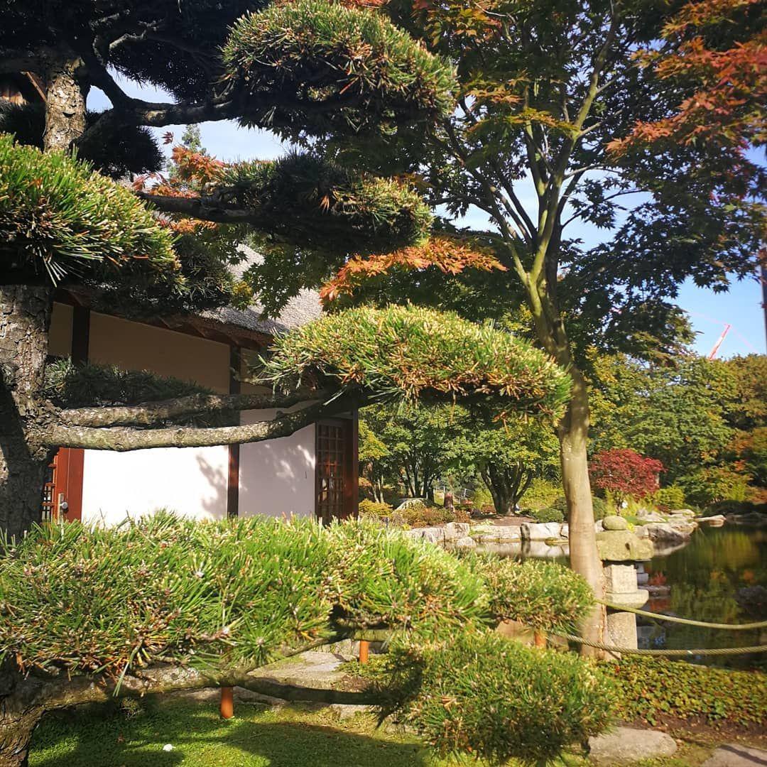 I Notice That Autumn Is More The Season Of The Soul Than The Nature Friedrich Nietzsche Hamburg Germany Hamburgliebe Japanischer Garten Garten Japan