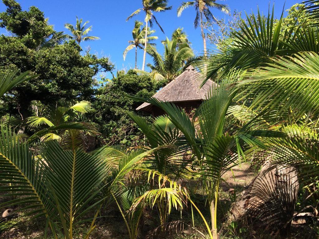 Serenity Beaches Resort TongaUoleva Island Resort Reviews