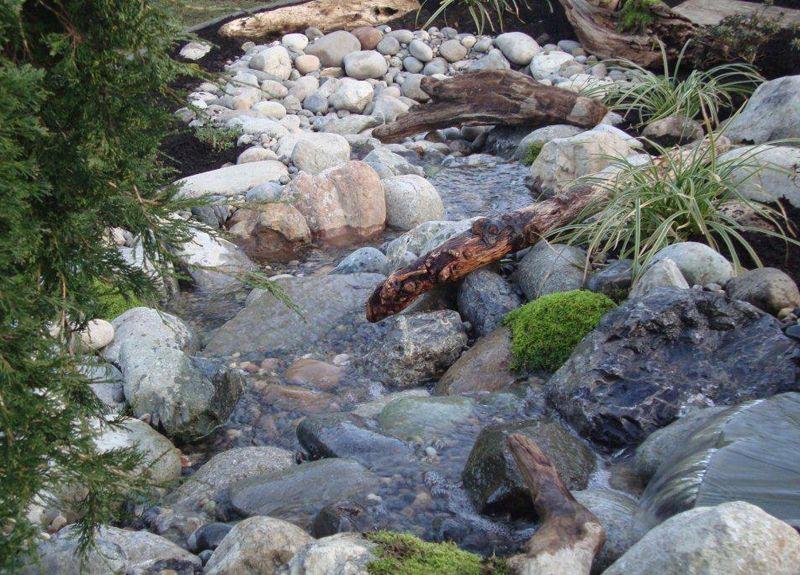 Dry Creek Bed Landscaper Lily Pond Designs South Surrey