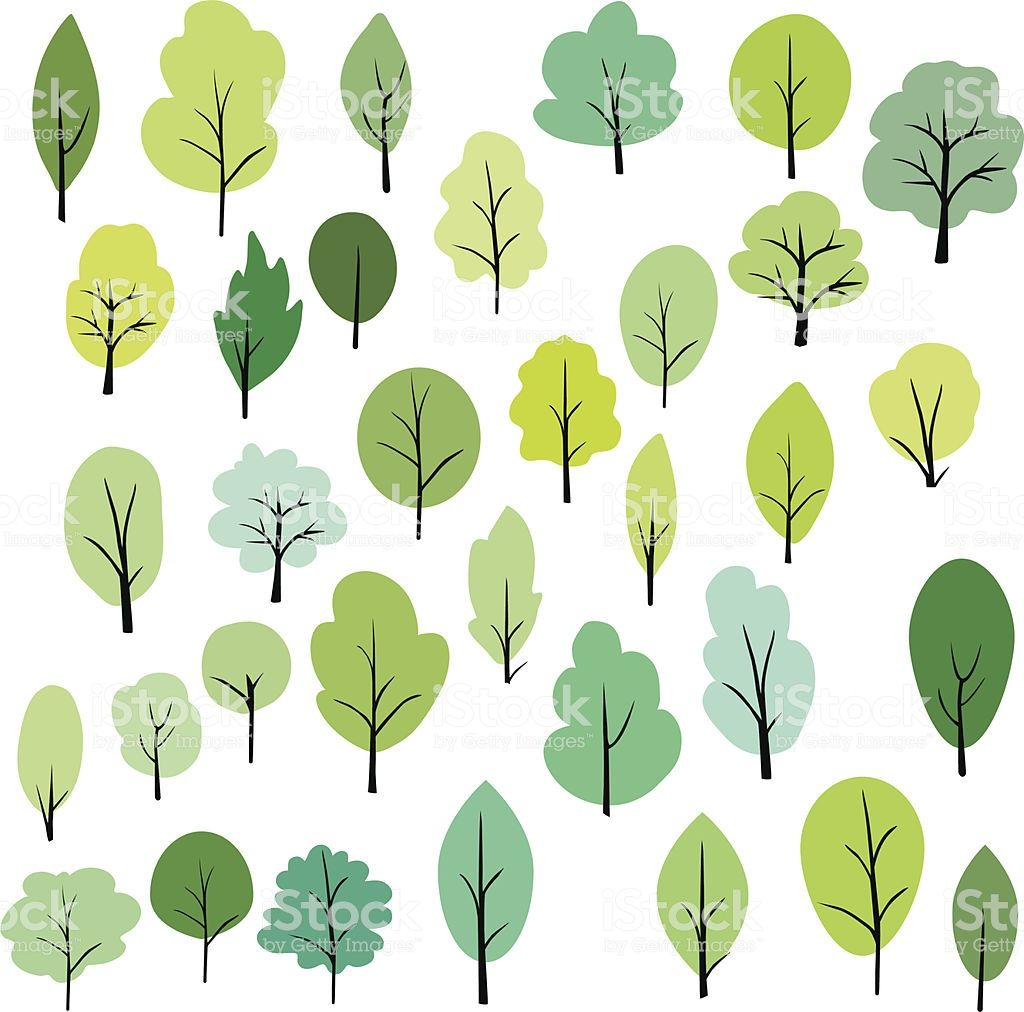 Set Of Different Trees Vector Illustration Tree Illustration Tree Sketches Tree Graphic
