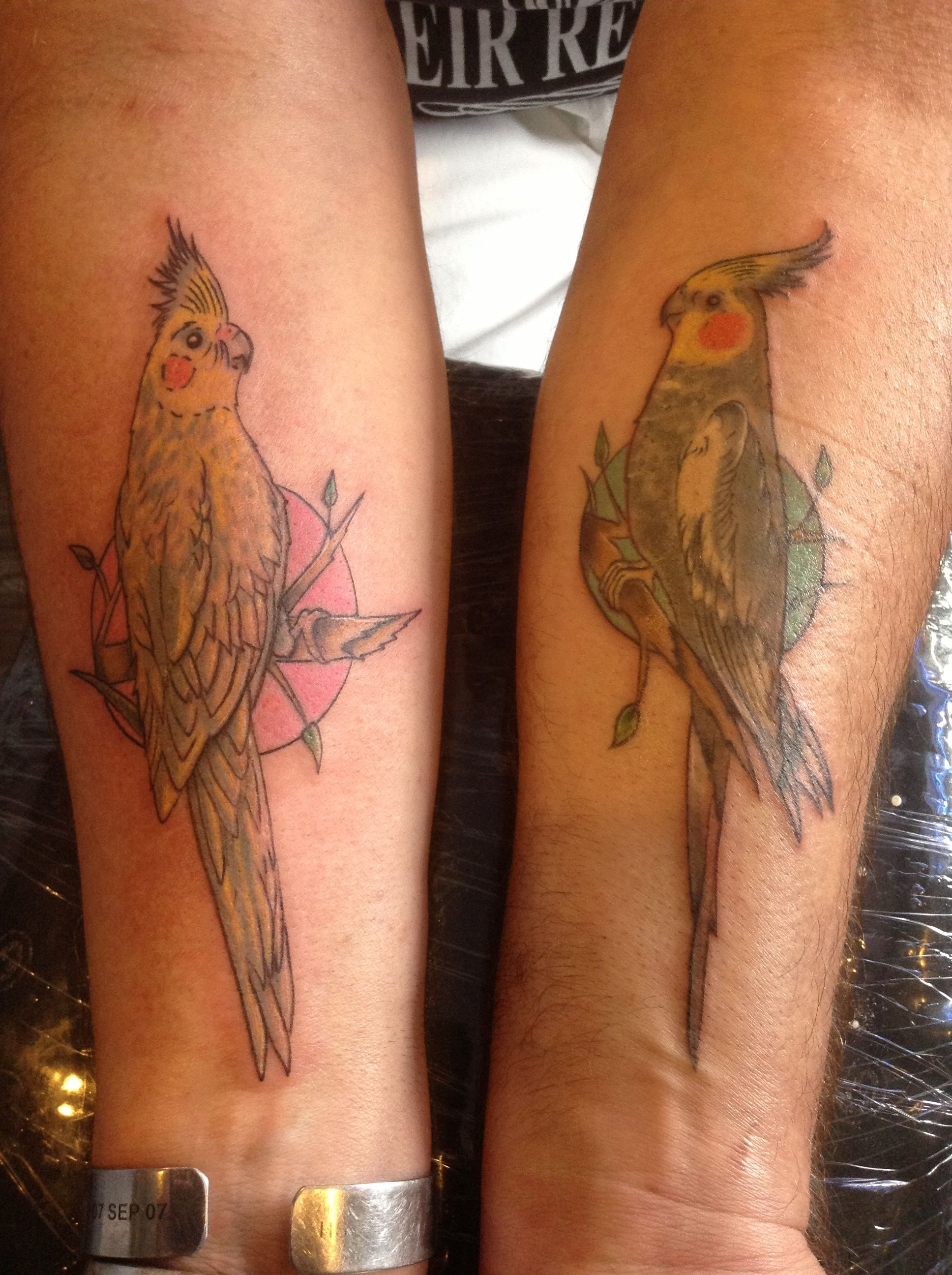 78ff6b6f46 Cockatiel tattoos I did so my client could remember his buddies ...
