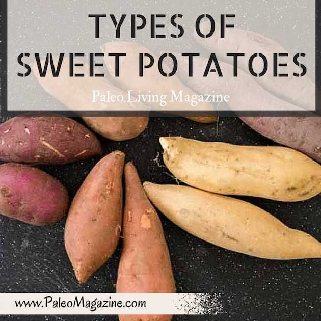 how to find the sweet potato you love the most my garden sweet rh pinterest com