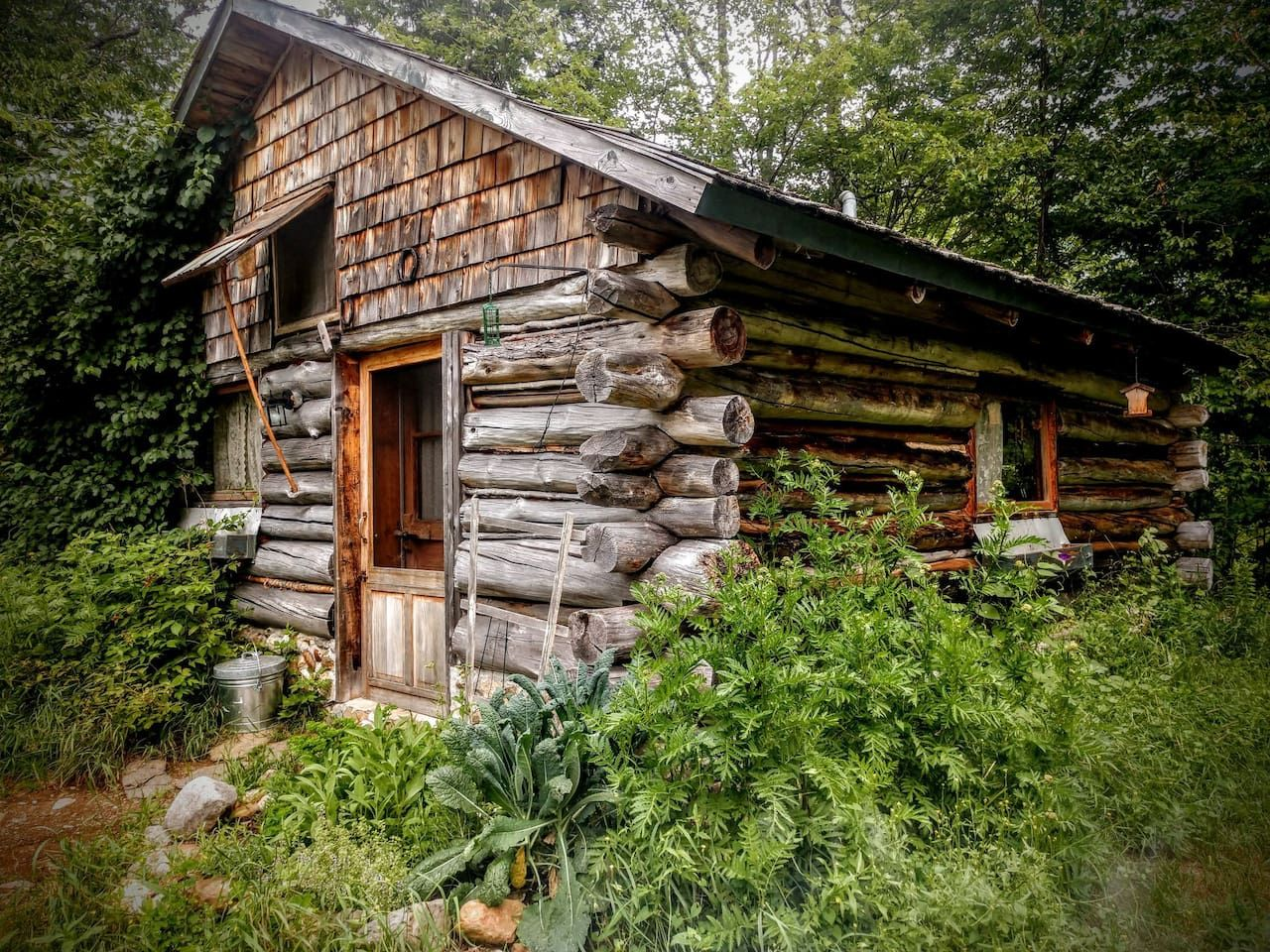 Log cabin on lovely mountain pond cabins for rent in