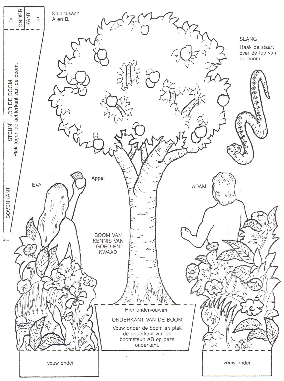 Adán y Eva | Actividades bíblicas | Pinterest | Escuela dominical ...