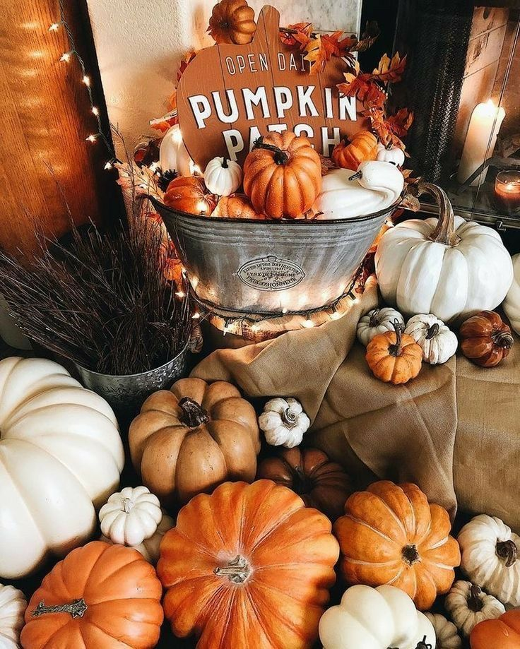 Pin By Kellyn Zehner On Fall In 2020 Fall Basics Fall Vibes Autumn Cozy