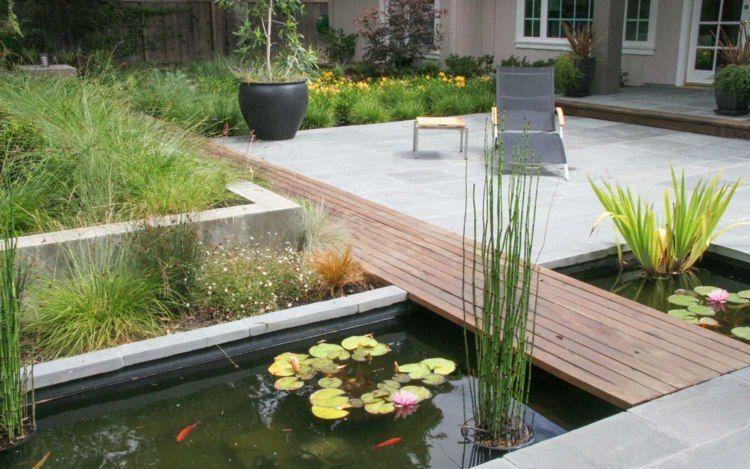 Plantes vivaces, graminées et arbres dans le jardin moderne ...