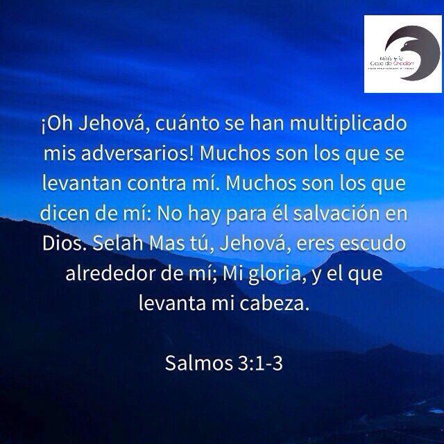 Salmo 3 1 3 Con Imagenes Salmos