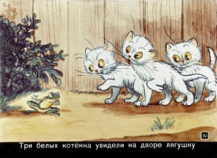 Сказки в картинках Сутеев диафильм 1958 смотреть рисунки ...