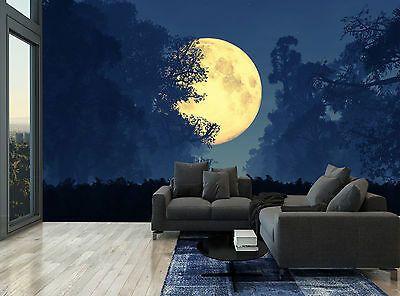 Details about Golden Moon Dark Night Sky Forest Wall Mural
