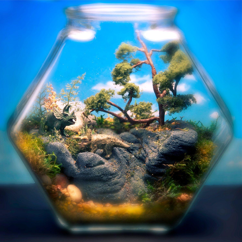 Zen Garden | Baby Dinosaur Mini Zen Garden Terrarium By The Wonder Room |  Gardening | Pinterest | Mini Zen Garden, Garden Terrarium And Terraria