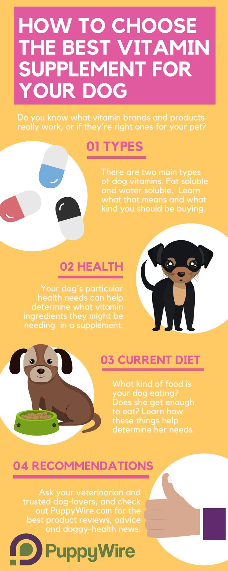 Choosing The Best Multivitamin For Dogs Can Be Challenging We Cover The Most Important Aspects To Help Regardless I Dog Diet Coconut Oil For Dogs Dog Vitamins