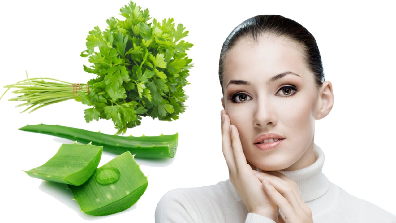 uses of coriander for beautiful skin || 10 amazing benefits