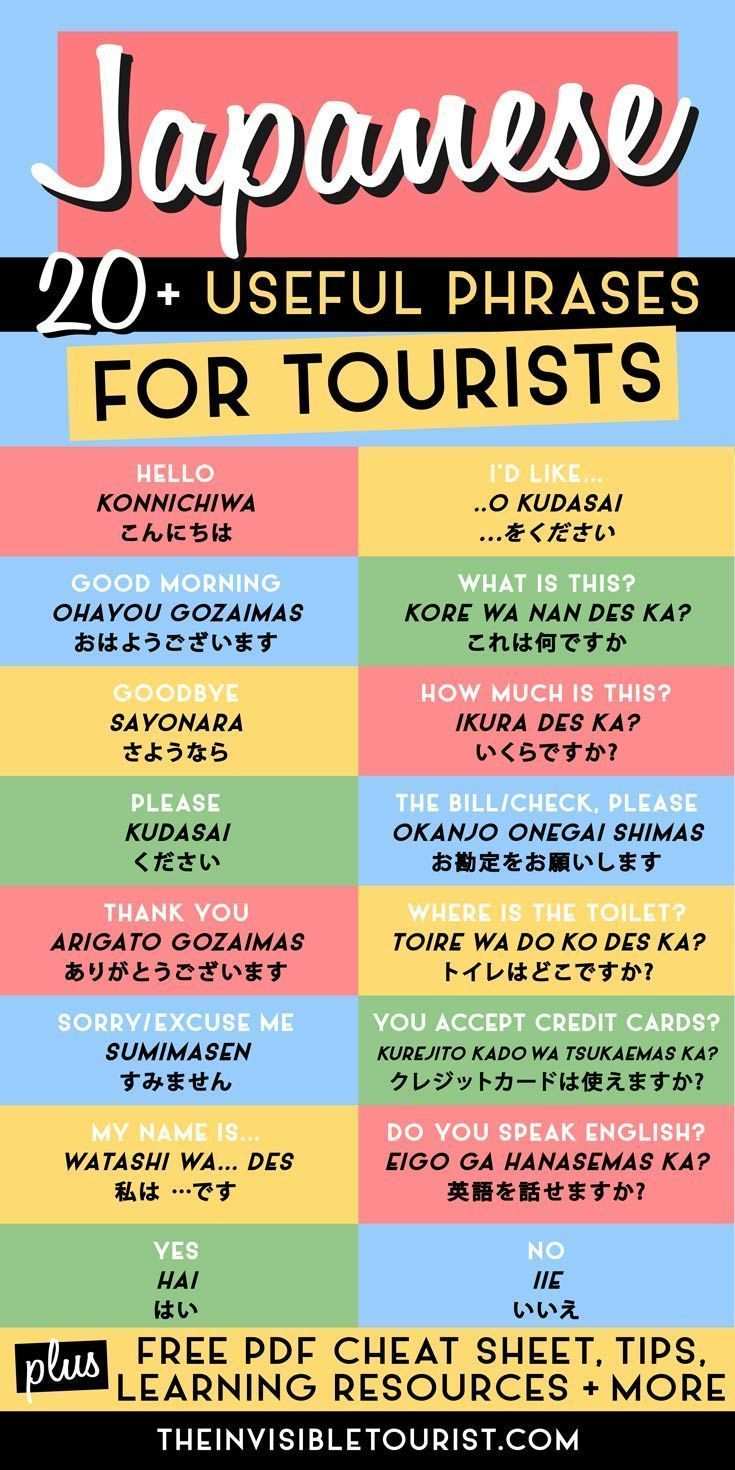 20+ Super Useful Phrases in Japanese for Tourists & FREE Cheat Sheet These easy phrases in Japanese for tourists will help overcome the language barrier on your trip to Japan. Includes FREE PDF cheat sheet for offline use! | The Invisible Tourist #japanese #tourists #learn #language   #Super #Useful #Phrases #in #Japanese