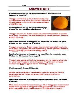 Egg Osmosis Take Home Lab | Osmosis, Answer keys, Lab