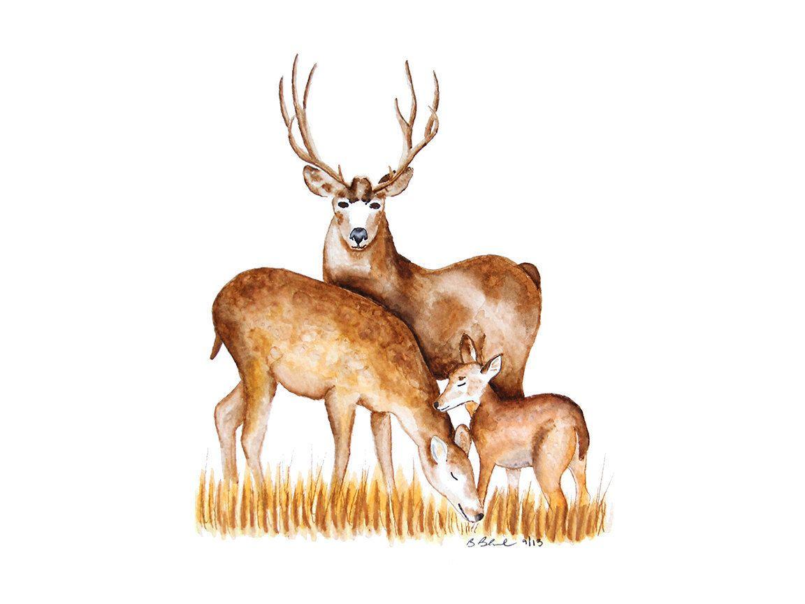Deer Nursery Print Deer Print Nursery Art Woodland Animal Etsy Deer Nursery Woodland Nursery Decor Woodland Animal Nursery