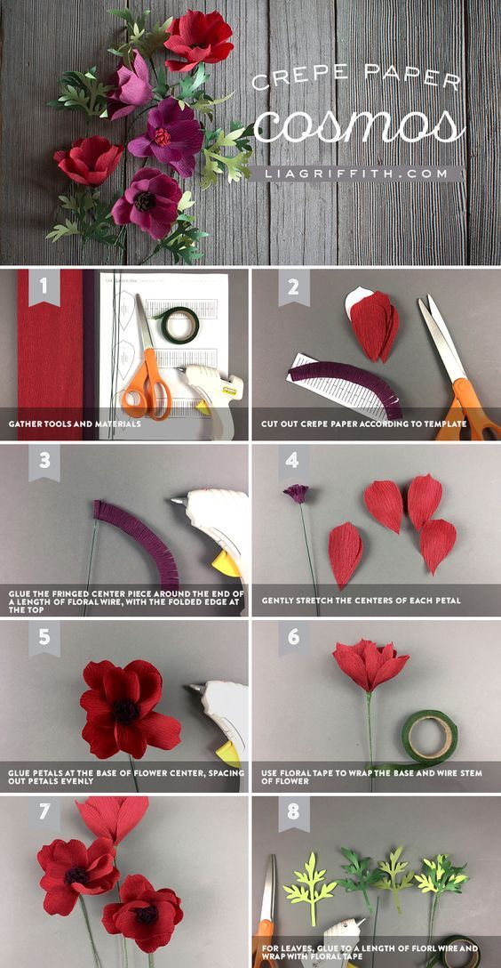 Crepe Paper Cosmos Easy Diy Paper Flower For Beginners Paper Flowers Paper Flower Tutorial Flower Crafts