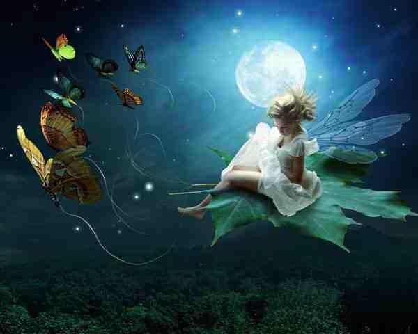 Fairy night ride