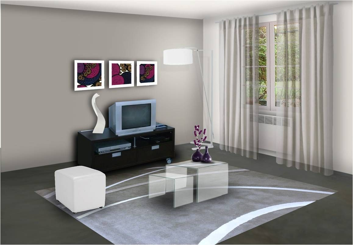 decoration peinture salon moderne 2