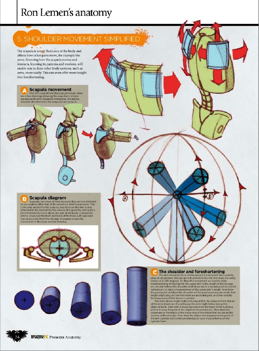 Ron Lemen Anatomy! | Study | Pinterest | Anatomy, Drawings and Human ...
