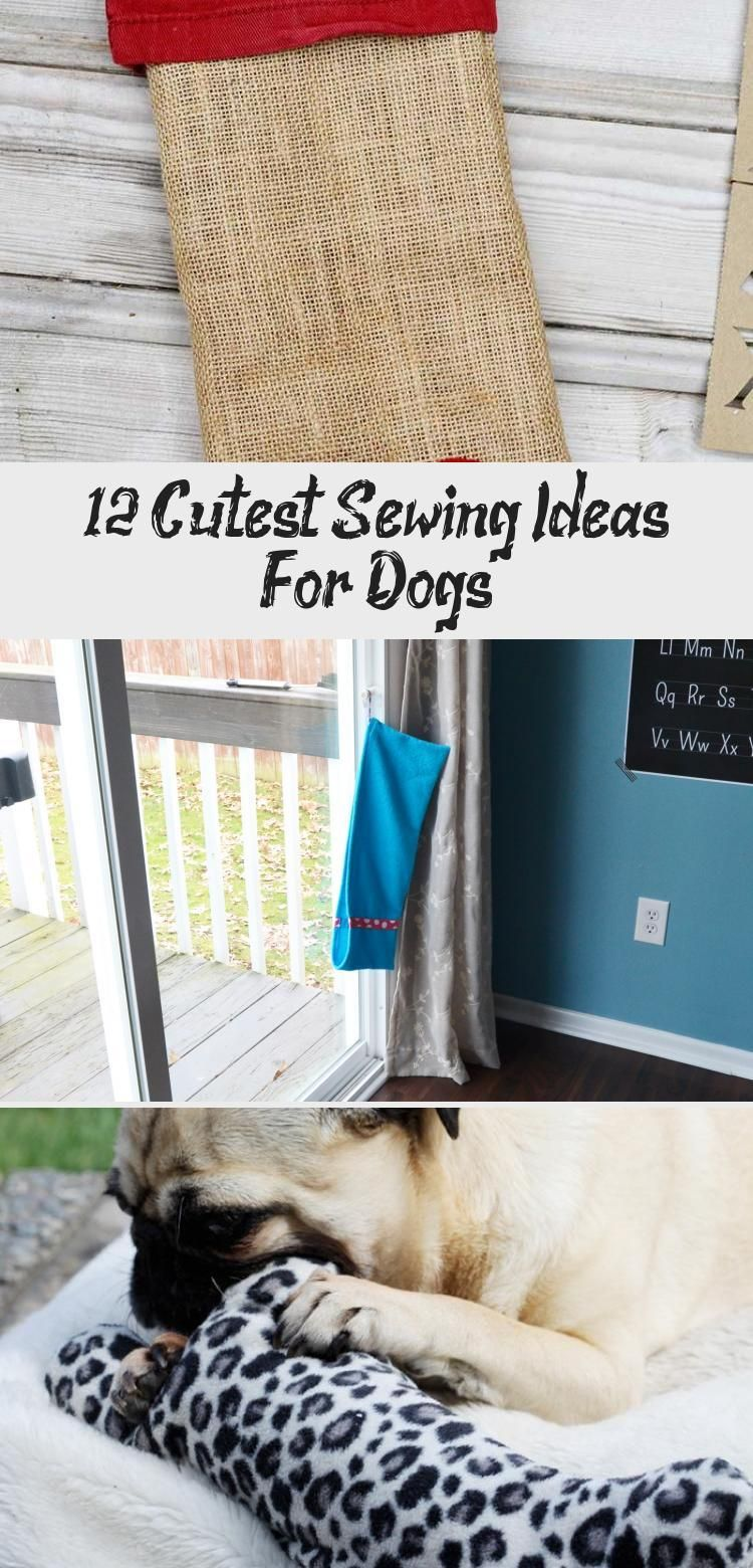 Sew for your canine companion with these creative sewing projects for dogs Dog sewing projects are good for beginners and fun to make