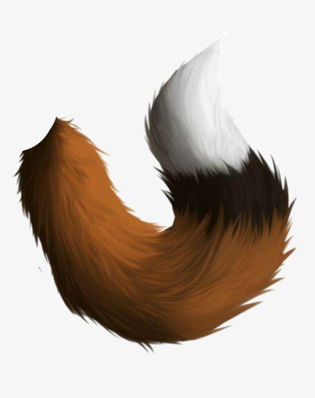 Fox Tail Drawing : drawing, Stuff