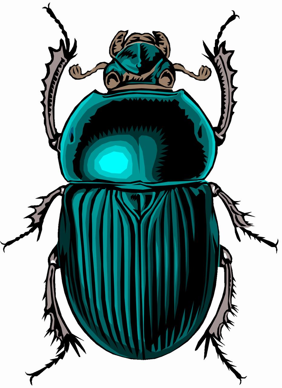 Для друга, жук картинки нарисованные