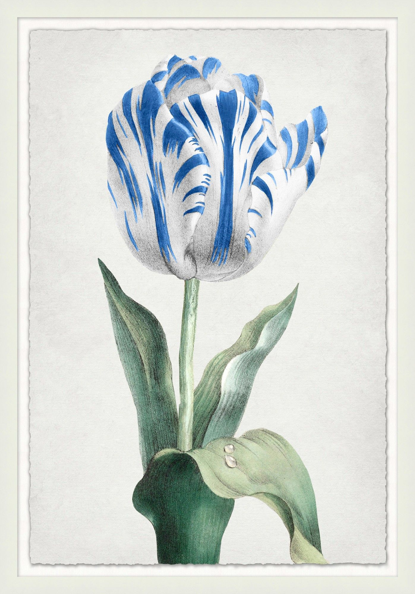 Spring Tulip 2 Lillian August Our Product Framed Wall Art Art Spring Tulips