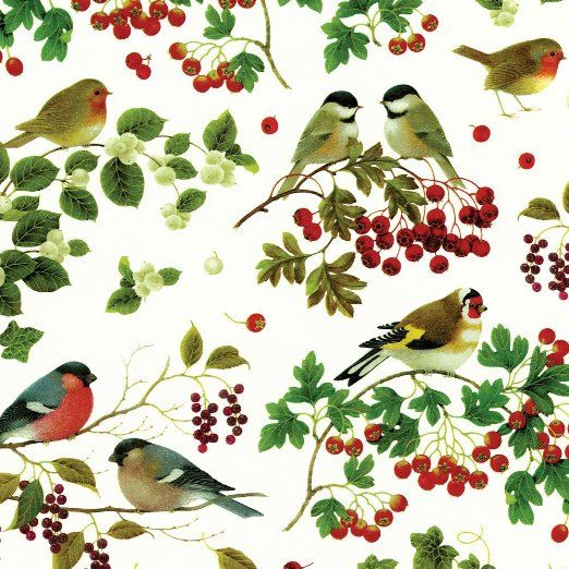 Caspari Winter Birds wrapping paper