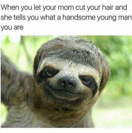 d416a10cec8a562e96ef4388c44a46c3 funny memes [when you let your mom cut your hair] funniest