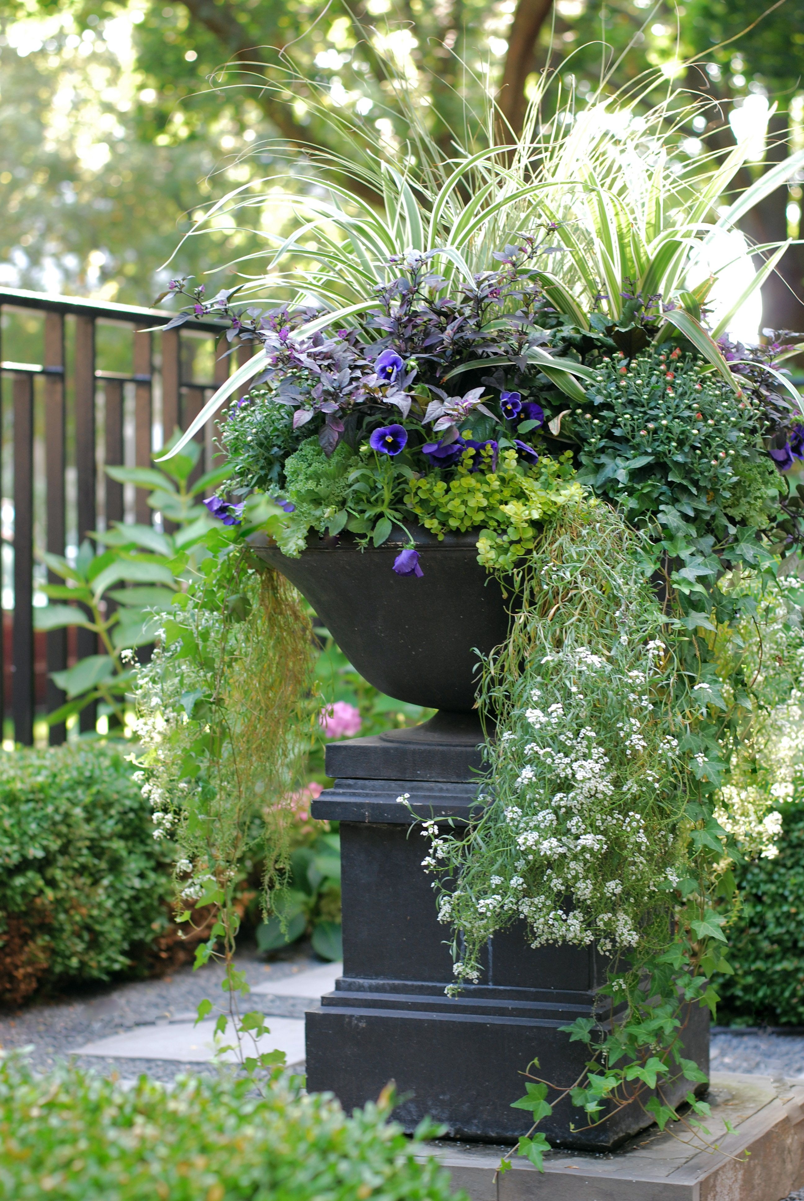 Fall Annuals Container Planter Front Yard Urn Landscape Design