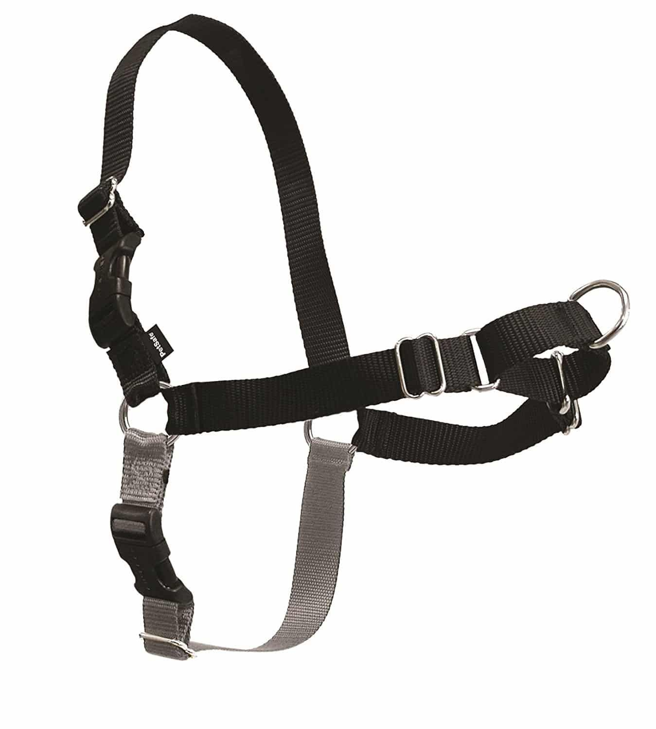 Top 10 Best No Pull Dog Harnesses In 2020 Reviews Dog Harness Best Dog Training Training Your Dog