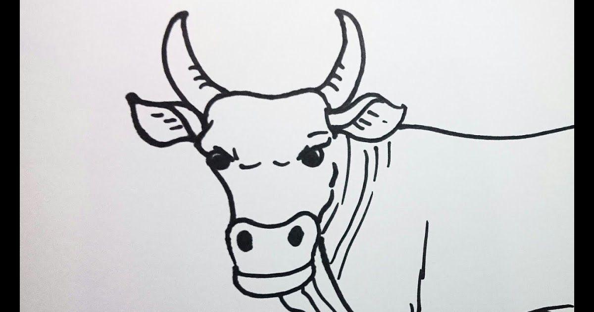 Terbaru 30 Gambar Sketsa Kartun Sapi Haha Tutorial Cara Menggambar Sapi Konyol Download Sribu Desain Maskot Karak Menggambar Sketsa Ilustrasi Hewan Sketsa
