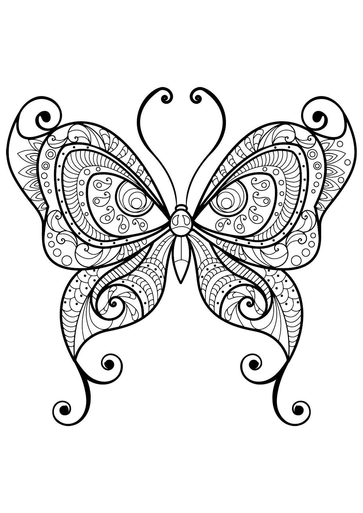 Papillon jolis motifs 29 - Coloriage d  Dessin papillon