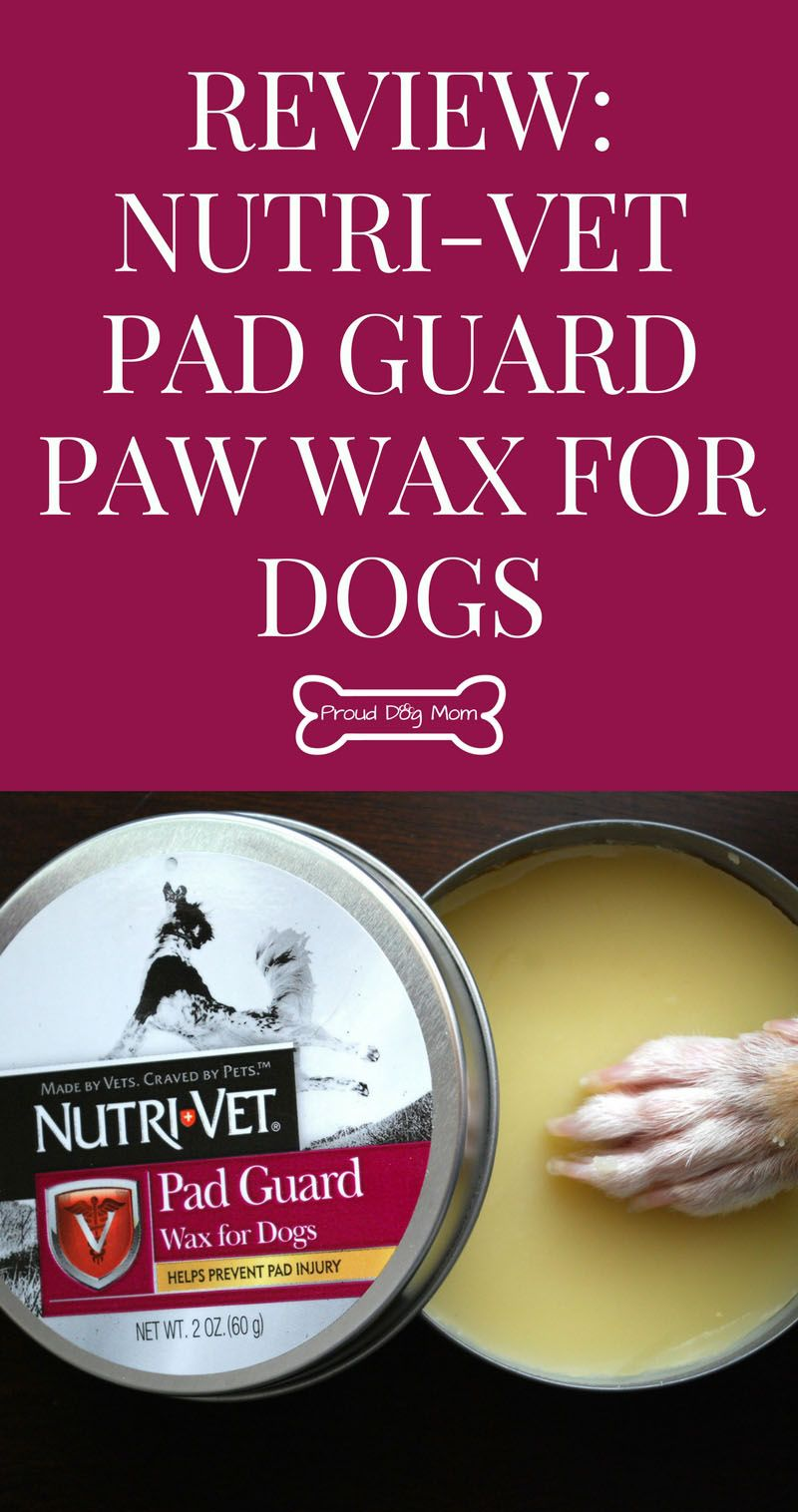 Review NutriVet Pad Guard Paw Wax For Dogs Dog