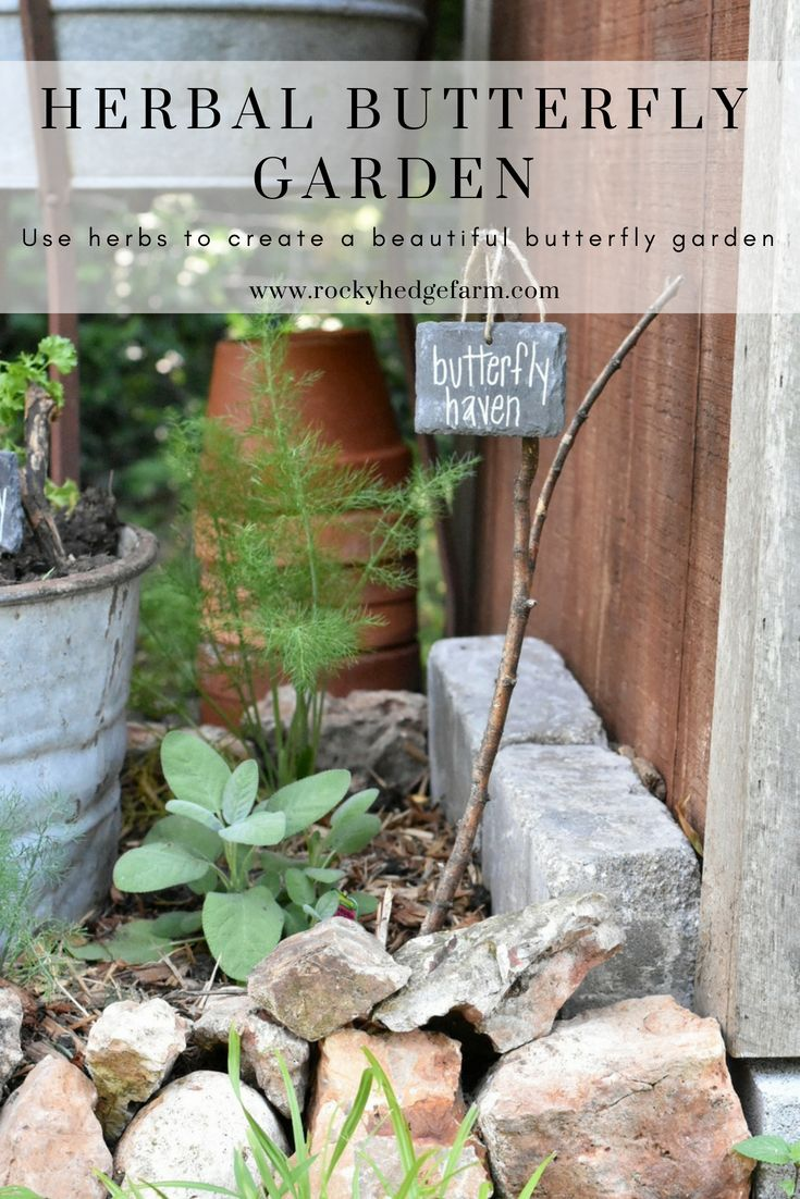 Herb Garden for Butterflies is part of Vertical garden Drawing - One of my favorite sites to see is the beautiful butterflies that gracefully flutter through the air, fluttering from flower to flower in my garden  One of my hopes this year was to create a small haven that would encourage the butterflies to visit our area more often and to plant several variety of