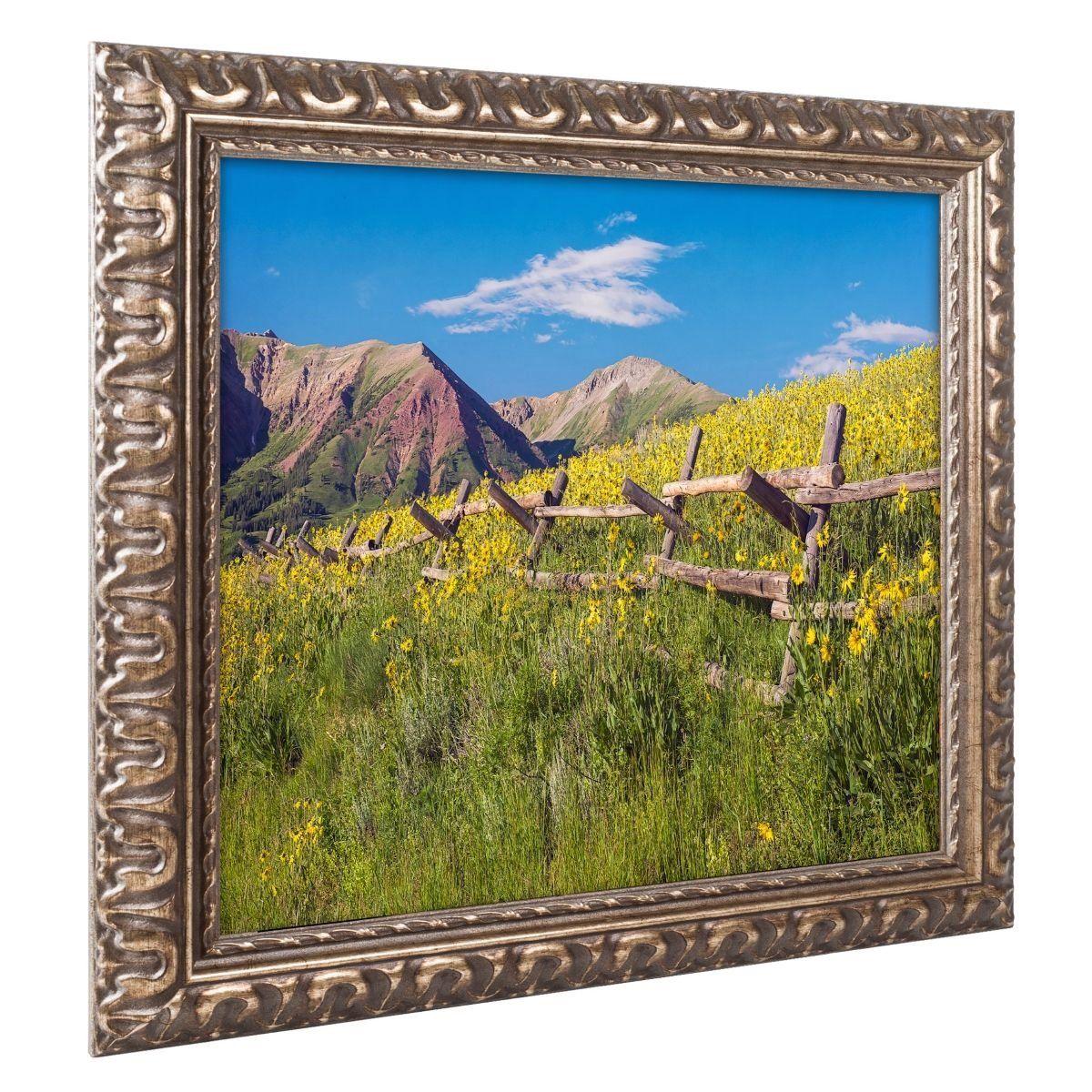 Trademark Global Michael Blanchette Photography Wood Fence Ornate Framed Art 17 75 1000 Framed Photographs Trademark Fine Art Fine Art