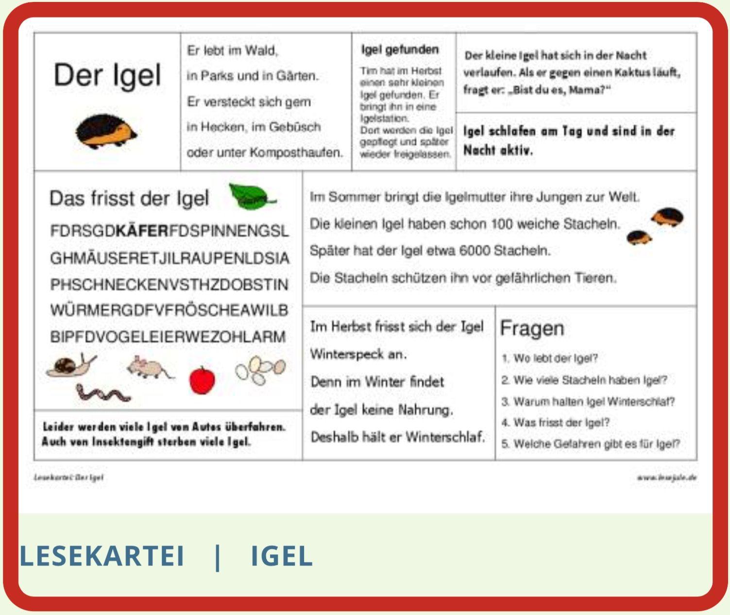 Lesekartei Igel Lesen Schreiben Lernen Lernkarten