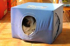 Simple instructions that explain how to make a fun tent out of an old t-shirt and a cardboard box - a great hiding place for your cat!
