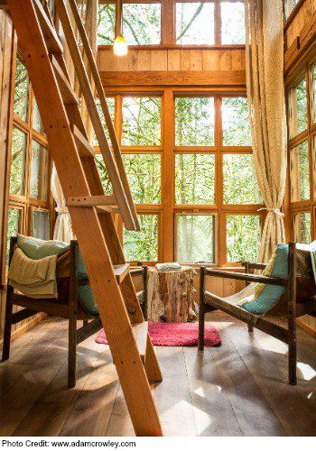 Reconnect in Nature: Treehouse Point | Macaroni Kid