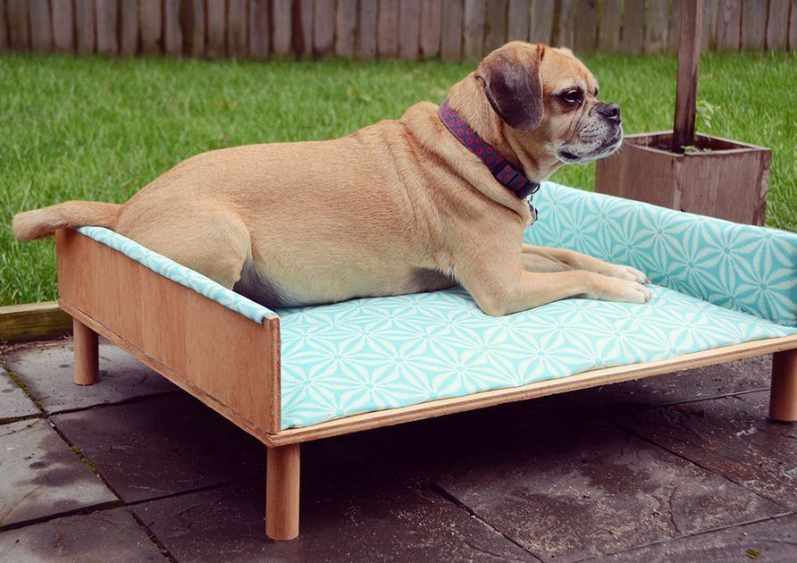 DIY Upholstered Outdoor Dog Bed in 2020 Outdoor dog bed