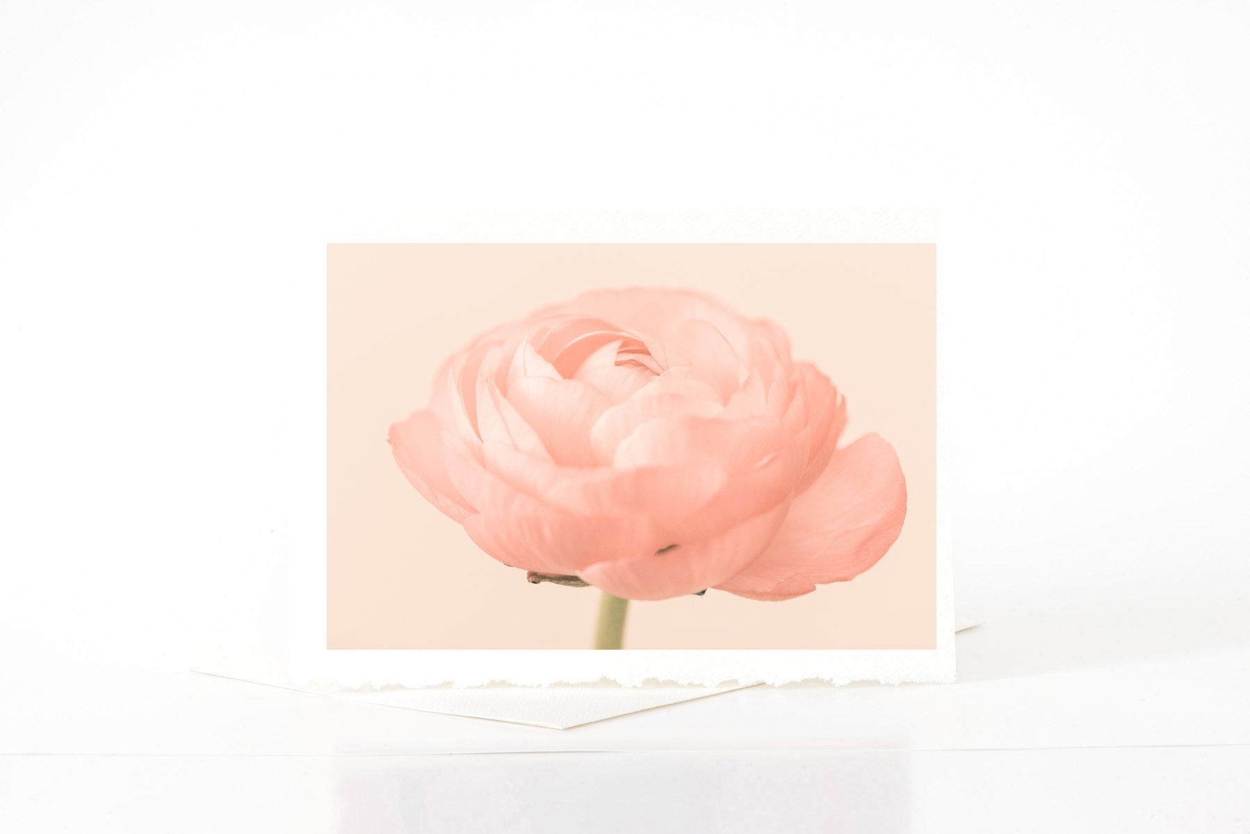 Ranunculus Flower Blank Greeting Card Etsy Handmade Photo Greeting Cards Soft Peach Floral Nature Note Cards Botanical Photo Card Sets In 2020 Photo Greeting Cards Etsy Handmade Flower Cards