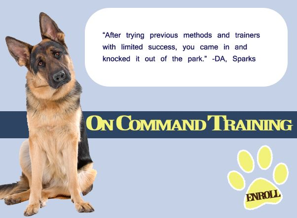 On Command Dog Boarding Grooming Daycare Training Reno Nv On