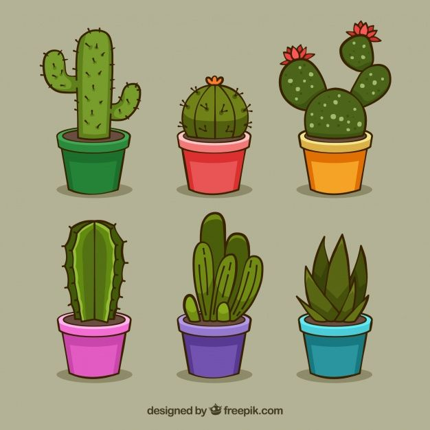 Pack Divertido De Cactus Coloridos Vector Gratis Cactos Desenho