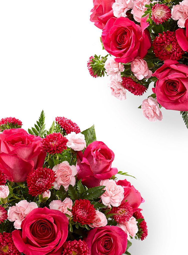 Flowers Online Send Flowers, Plants & Gifts