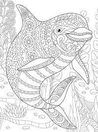 20 gratis te printen dolfijn kleurplaten topkleurplaat