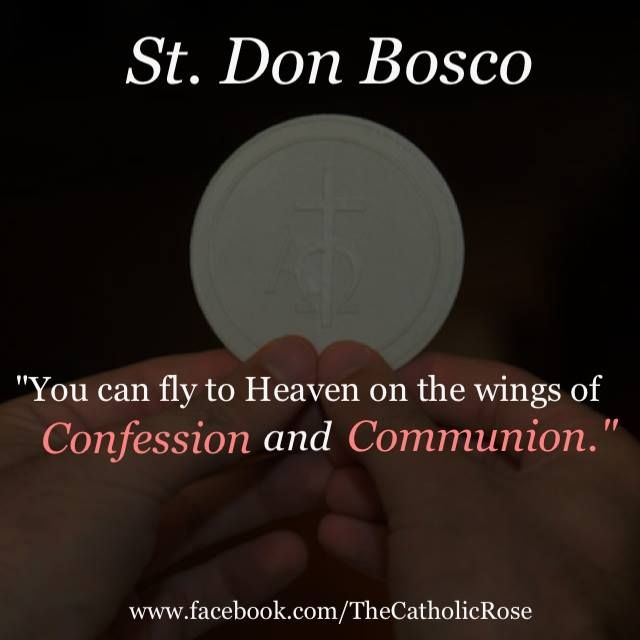 "St John Bosco Quotes Education: St. John Bosco-""We Can Fly To Heaven On The Wings Of"