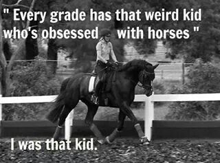 Pin By Erin On Horses Funny Horse Memes Horse Jokes Horse Riding Quotes